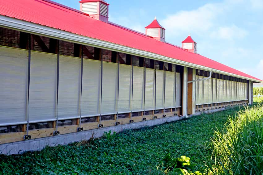 Drop And Roll Curtains Curtains For Barns